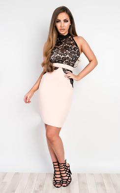 Pixie Lace Bodycon Dress