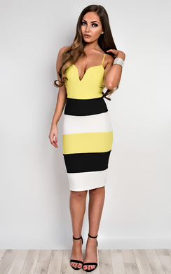 Edrie Panelled Bodycon Dress