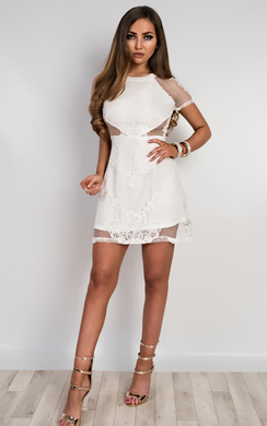 Earlene Sheer Lace Mini Dress