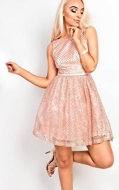 Lexi Embellished Skater Dress