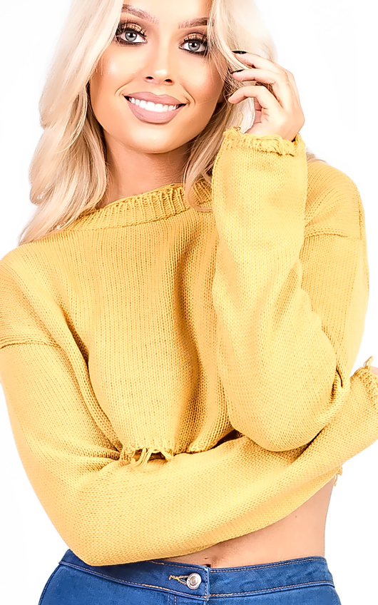 Holly Knitted Distressed Cropped Jumper