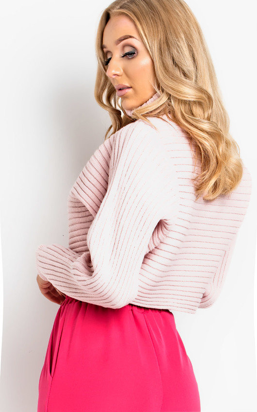 bbbcf618dad Candi Poloneck Knit Crop Jumper in Neon pink | ikrush