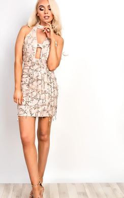 View the Shaylene Sequin Bodycon Dress online at iKrush