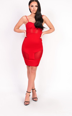 View the Kelsey Mesh Bodycon Dress online at iKrush